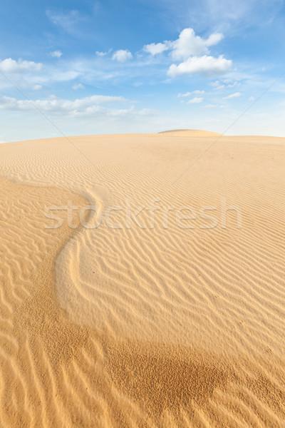白砂 日の出 ベトナム 自然 アジア 影 ストックフォト © dmitry_rukhlenko