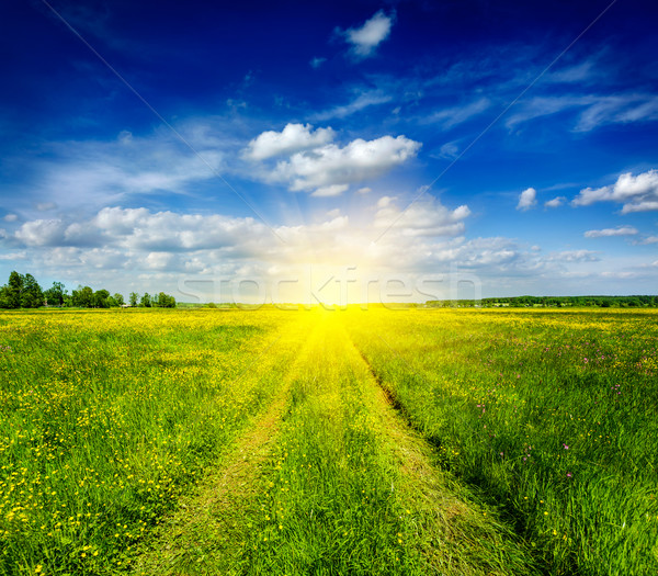 Stock photo: Spring summer - rural road in green field scenery