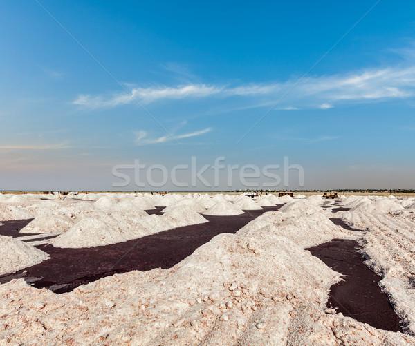 Sal mina lago Índia Foto stock © dmitry_rukhlenko