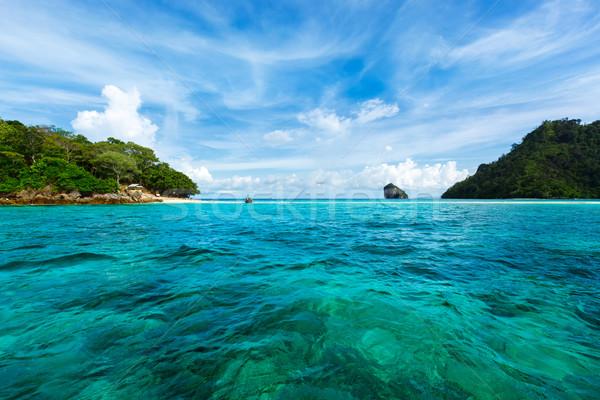 Tropikal deniz krabi Tayland plaj Stok fotoğraf © dmitry_rukhlenko