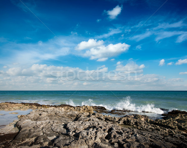 Waves breaking againt rocky coast Stock photo © dmitry_rukhlenko