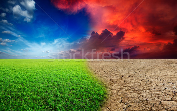Climate change Stock photo © dmitry_rukhlenko