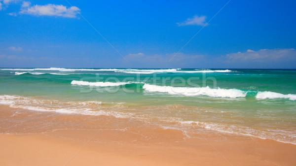 Pacífico playa escena océano cielo azul belleza Foto stock © dmitry_rukhlenko