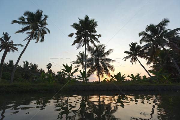 Sunset on Kerala backwaters Stock photo © dmitry_rukhlenko
