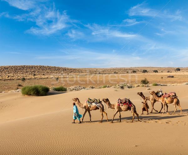 Twee kamelen reizen indian kameel woestijn Stockfoto © dmitry_rukhlenko
