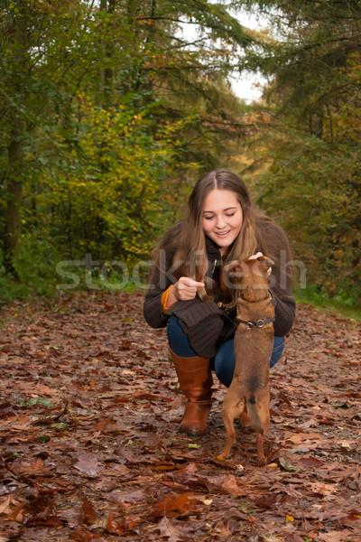 Bonitinho menina cão jovem bom Foto stock © DNF-Style