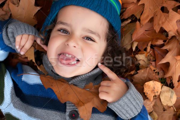 Hall boldog gyermek szórakozás erdő természet Stock fotó © DNF-Style