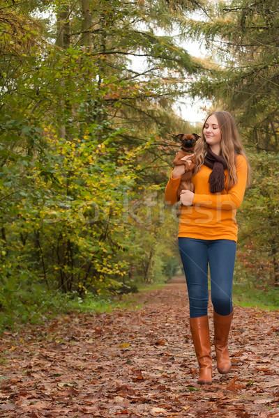 ходьбе улыбаясь собака молодые Nice Сток-фото © DNF-Style