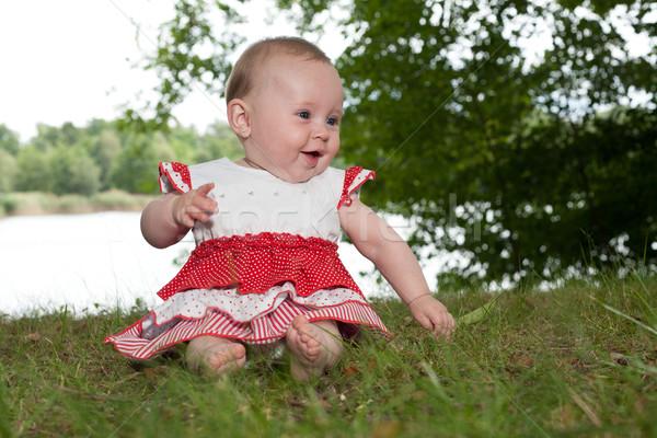 Feliz bebê pequeno menina sessão jogar Foto stock © DNF-Style