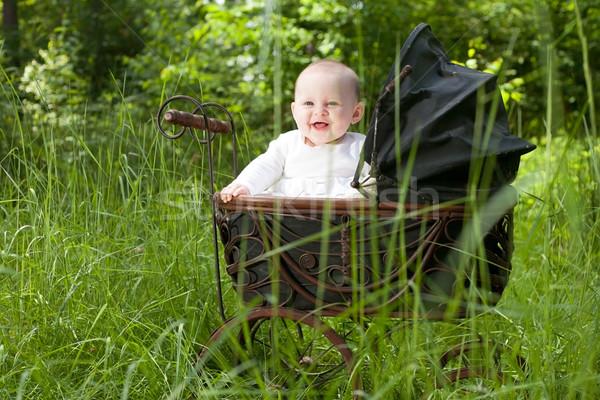 Baby vintage kinderwagen vergadering glimlach Stockfoto © DNF-Style