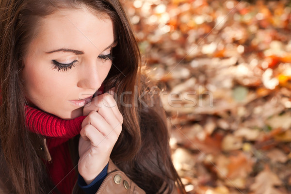 Fashion brunette in the autumn Stock photo © DNF-Style