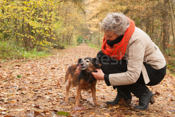 Middle ager is taking care of her dog Stock photo © DNF-Style