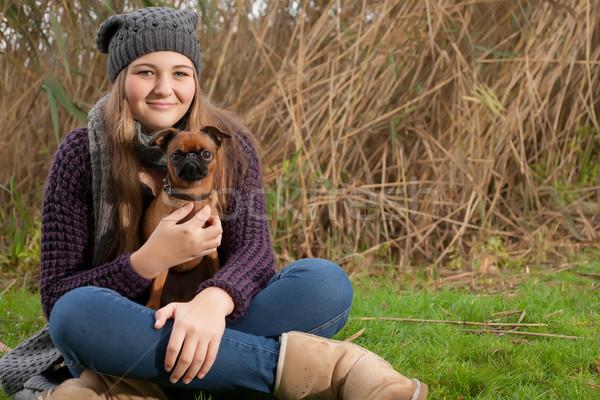 Sessão grama meu cão jovem Foto stock © DNF-Style