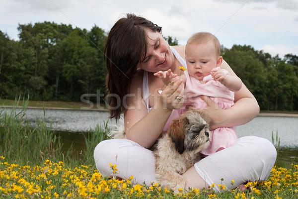 Pequeno família mãe filha bom tempo Foto stock © DNF-Style