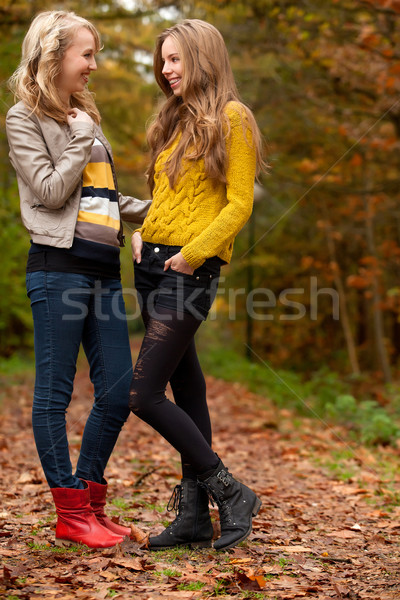 Teens in the autumn Stock photo © DNF-Style