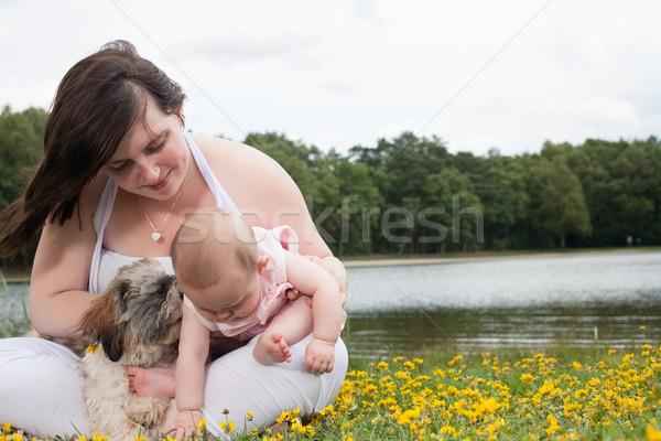 Bebê mais flores mãe filha bom Foto stock © DNF-Style