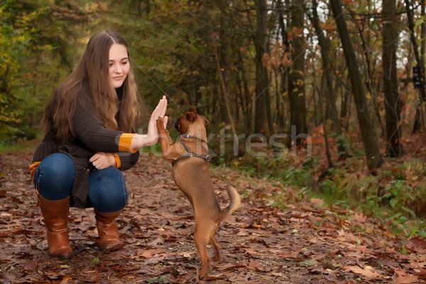 Tatlı genç köpek genç genç kız güzel Stok fotoğraf © DNF-Style