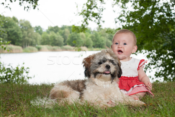 Baby and puppy in nature Stock photo © DNF-Style