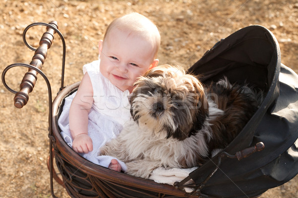 Baby and puppy in vintage pram Stock photo © DNF-Style