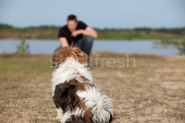 Kutyakölyök engedelmesség képzés kicsi kutya hallgat Stock fotó © DNF-Style