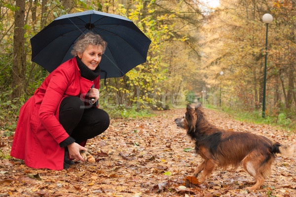 Woman playing with her dog and a stick Stock photo © DNF-Style
