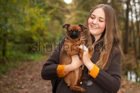 Proud dog Stock photo © DNF-Style