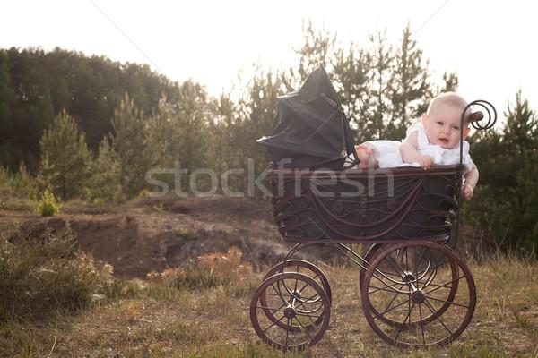 Bebek gün batımı oturma bağbozumu Stok fotoğraf © DNF-Style
