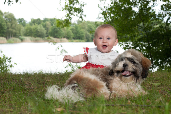 Mutlu bebek köpek yavrusu göl oynama doğa Stok fotoğraf © DNF-Style