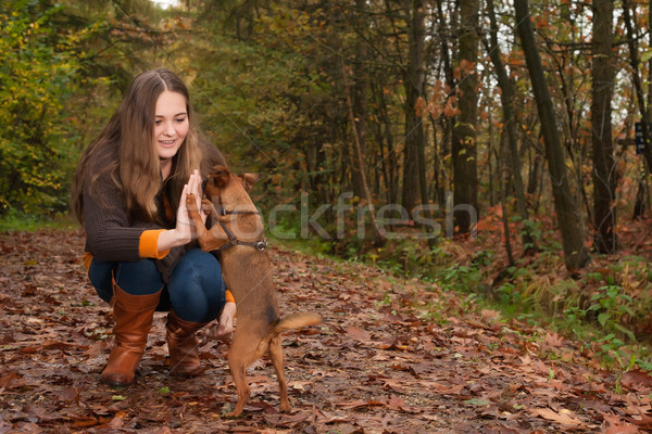 High five with the dog Stock photo © DNF-Style