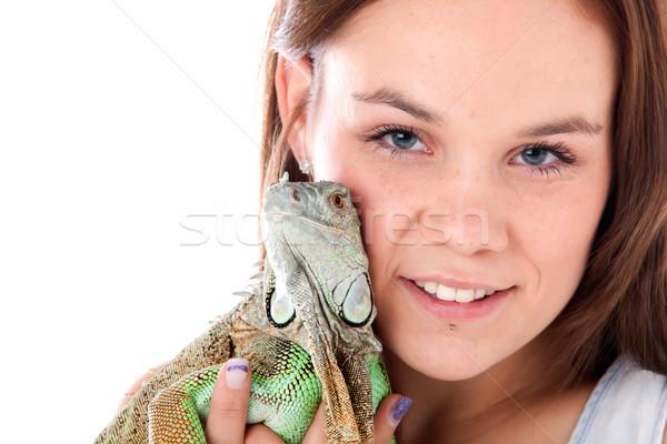 Dragonhugs Stock photo © DNF-Style