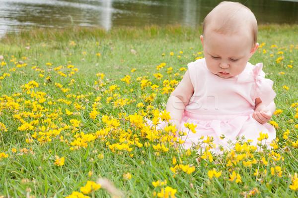 Bebek tatlı alan çiçekler yüz Stok fotoğraf © DNF-Style