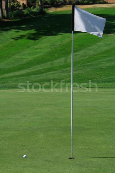 Golf Green Stock photo © dnsphotography