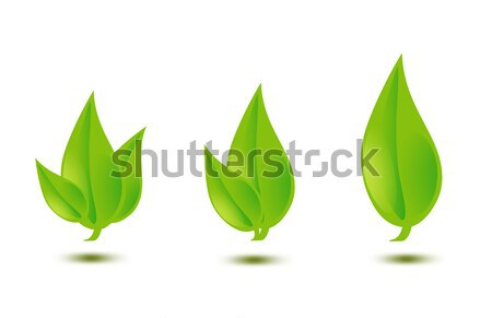 Stock photo: illustration of green leaves