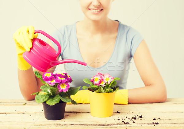 Stockfoto: Huisvrouw · bloempot · gieter · bloem · tuin · zomer