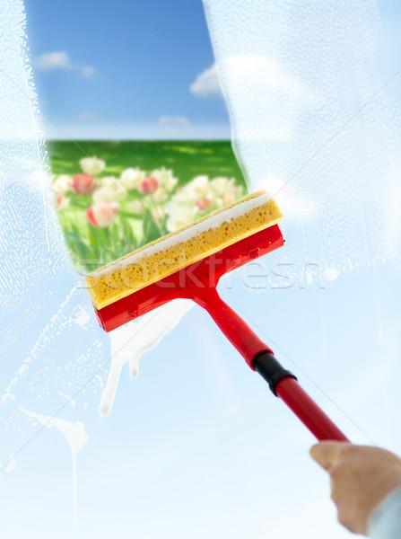 Mão limpeza janela esponja pessoas Foto stock © dolgachov