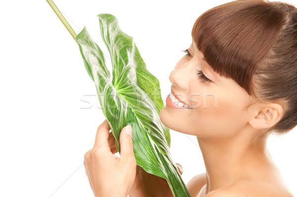 女性 緑色の葉 画像 白 幸せ 健康 ストックフォト © dolgachov