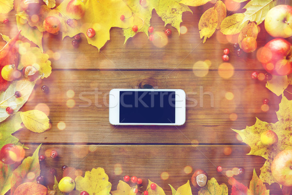 Stock photo: smartphone with autumn leaves, fruits and berries