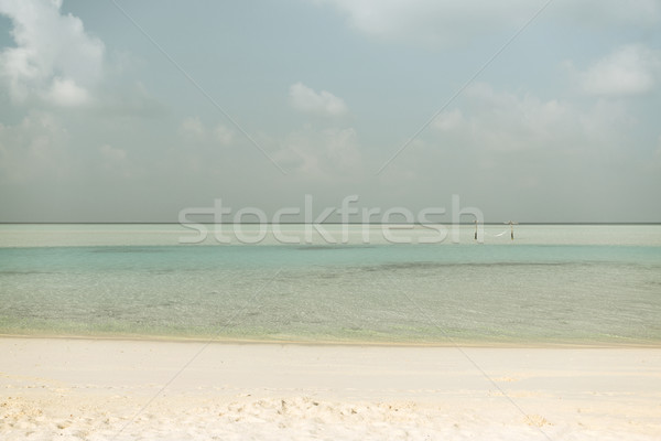 sea and sky on maldives beach Stock photo © dolgachov
