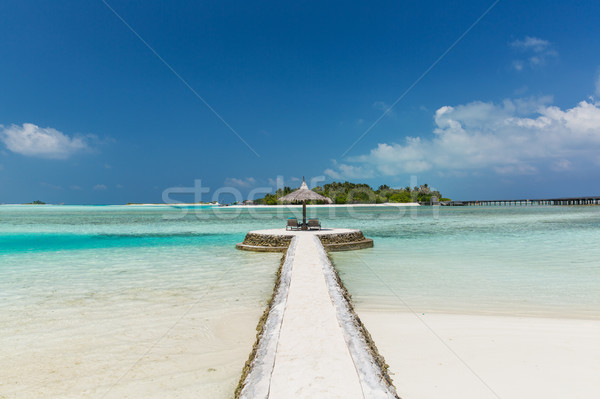 patio or terrace with palapa and sunbeds on beach Stock photo © dolgachov