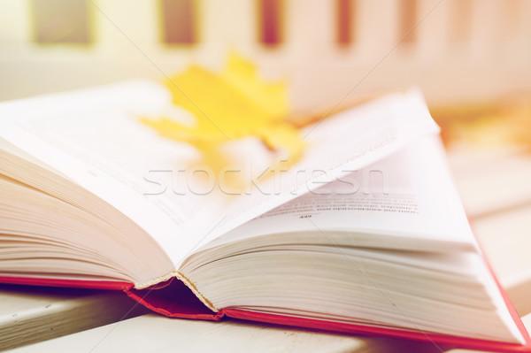 Livro aberto banco outono parque temporada educação Foto stock © dolgachov