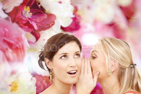 Deux souriant femmes chuchotement potins amitié Photo stock © dolgachov