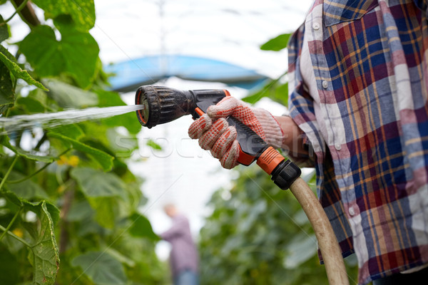 farmer with garden hose watering at greenhouse Stock photo © dolgachov