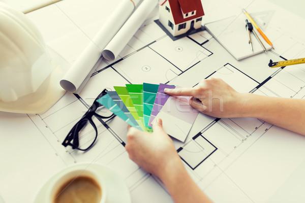 Közelkép kezek szín paletta terv üzlet Stock fotó © dolgachov