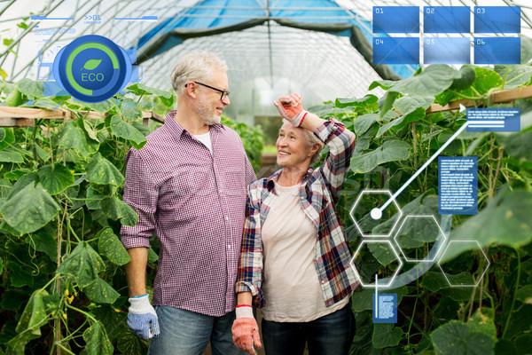 Feliz pareja de ancianos granja invernadero orgánico Foto stock © dolgachov