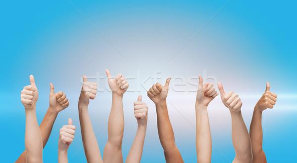 Humanos manos gesto partes del cuerpo Foto stock © dolgachov