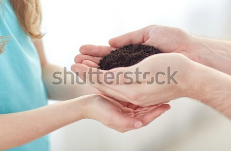 Vader meisje handen spruit Stockfoto © dolgachov