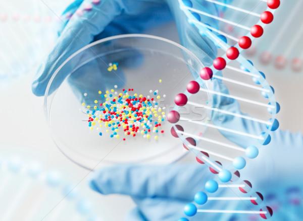 Wetenschapper handen chemische genezen Stockfoto © dolgachov