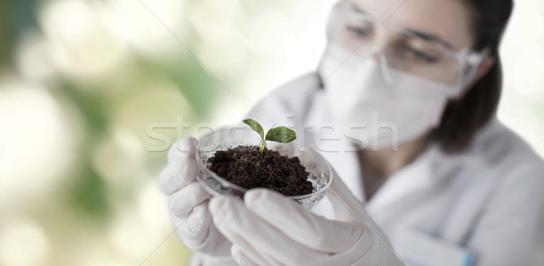 close up of scientist with plant and soil Stock photo © dolgachov