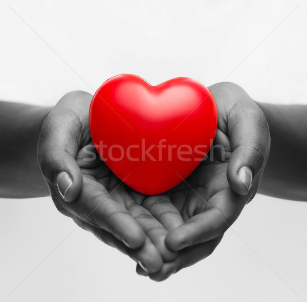 female hands with small red heart Stock photo © dolgachov
