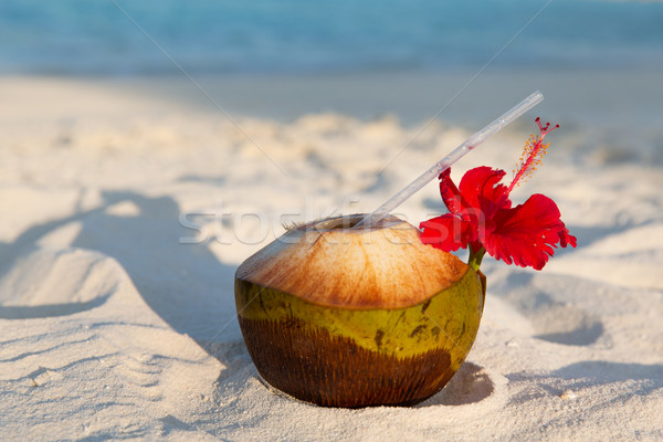 coconut drink on exotic tropical maldives beach Stock photo © dolgachov